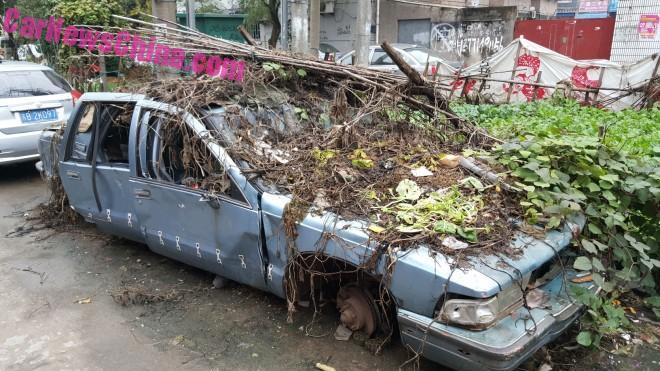 buick-roadmaster-china-11-660x371