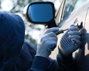 Які автомобілі найчастіше крадуть у столиці