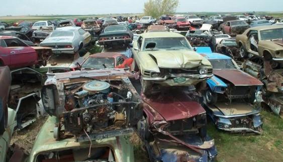 Страшний сон колекціонера: найбільше звалище з Ford Mustang
