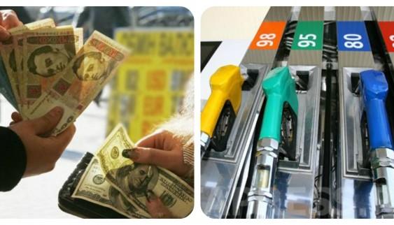 Скільки зараз коштує бензин: інфографіка