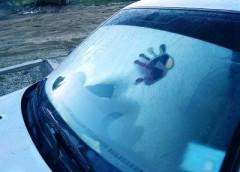 Простий спосіб, як швидко розморозити скло в машині
