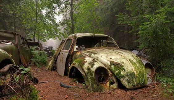 Вражає: найбільше кладовище автомобілів у світі