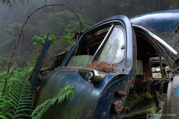 chatillon-car-graveyard-abandoned-cars-cemetery-belgium-6