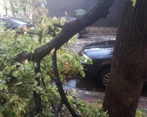 Відважні: у Харкові під час шторму кладуть асфальт (ФОТО)