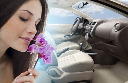 ТОП-10 способів ефективно освіжити повітря в салоні