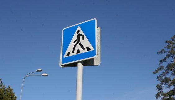 На дорогах України почали встановлювати спецзнаки для влади (Фото)