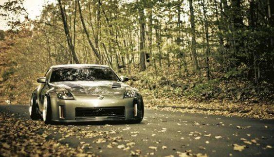 Яку небезпеку для водіїв таїть в собі опале осіннє листя?