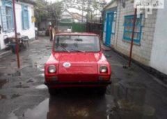 Українець продає радянський автомобіль за рекордну суму (Фото)