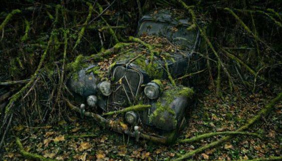"""Остання """"райська стоянка"""" автомобілів: ефектні фото"""