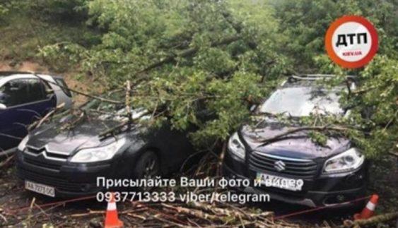 Жертви негоди: у Києві дерева знищують припарковані авто (Фото)