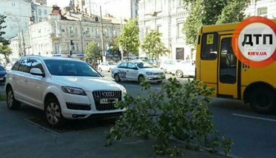 Розстріляти: в центрі Києва розкішне авто припаркували на дереві (Фото)