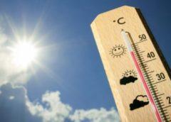 Як пережити спеку за кермом