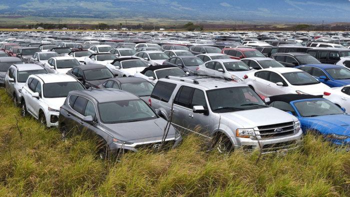 """100-кілометрове """"кладовище"""" орендних автомобілів"""